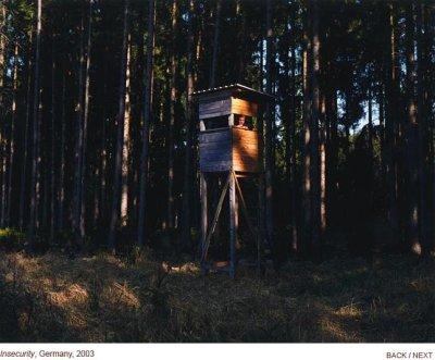 stewart_treehouse